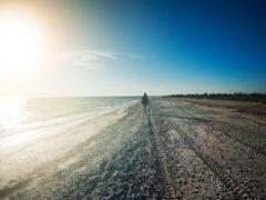 Польза прогулок пешком или еще одна хорошая привычка